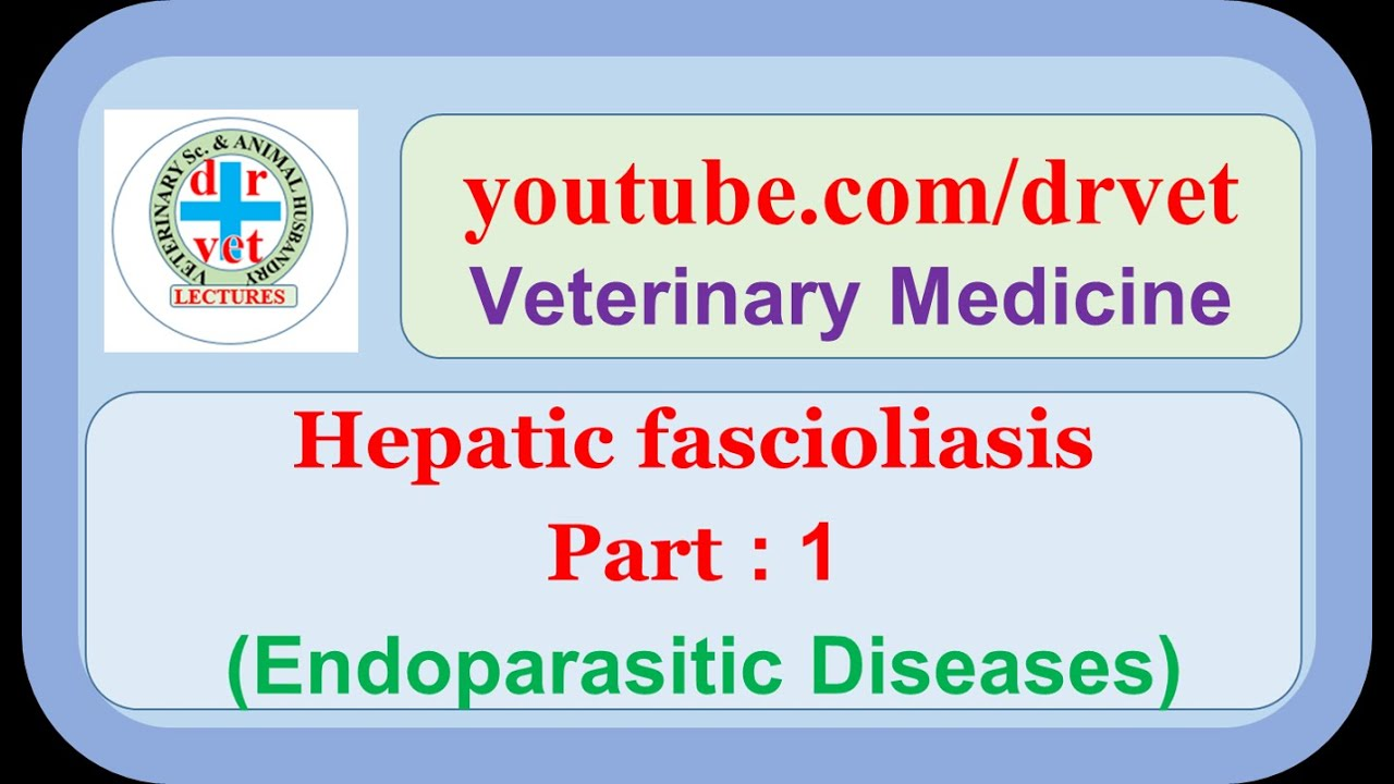 Humán fascioliasis kezelés. Helminthiasis, ahol él