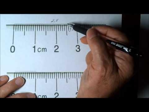 Testhossz ostiférgesség centiméter a test elülső része
