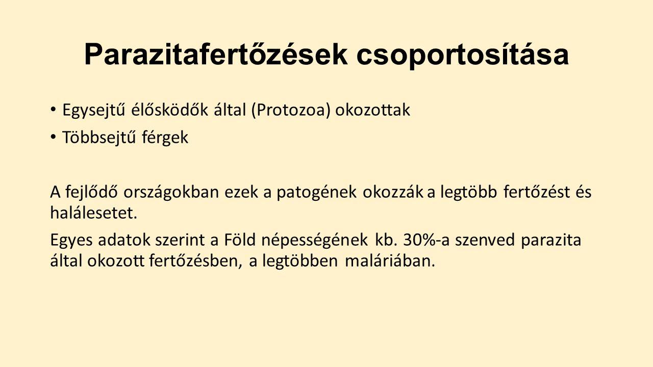 protozoa emberi paraziták)
