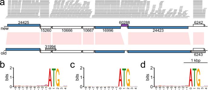 Giardia genome size, Navigációs menü