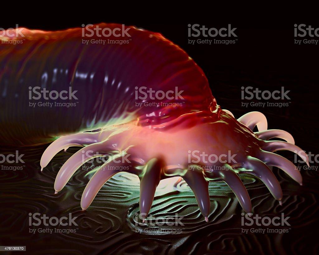 széna bacillus szaprofit vagy parazita