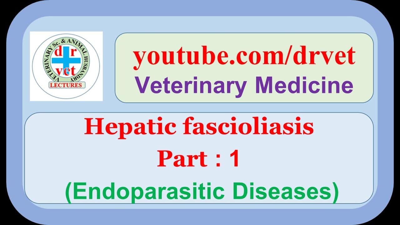 humán fascioliasis kezelés colopure fejlett vastagbél méregtelenítő