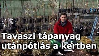 enterobiasis vizsgálat a kertben)