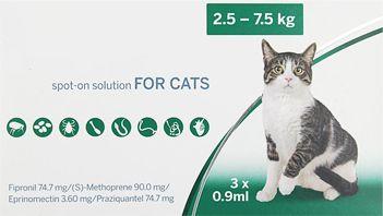 macska férgesség tünetei)