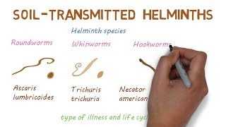 típusú helminthiasis gyermekeknél