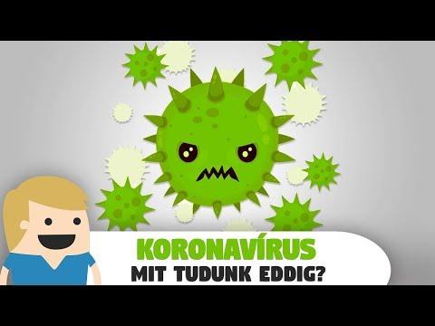 Trichinózis: okok, tünetek, diagnózis éskezelés - A trichinózis kezelhető vagy nem