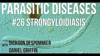 strongyloidosis a bőr alatt, hogyan kell kezelni