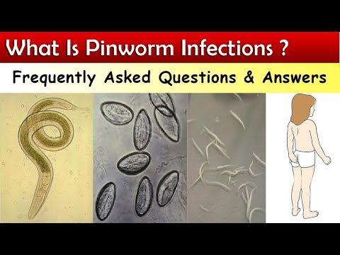 Kerek férgek (fonálférgek) Pinworm tabletták és kerekes férgek