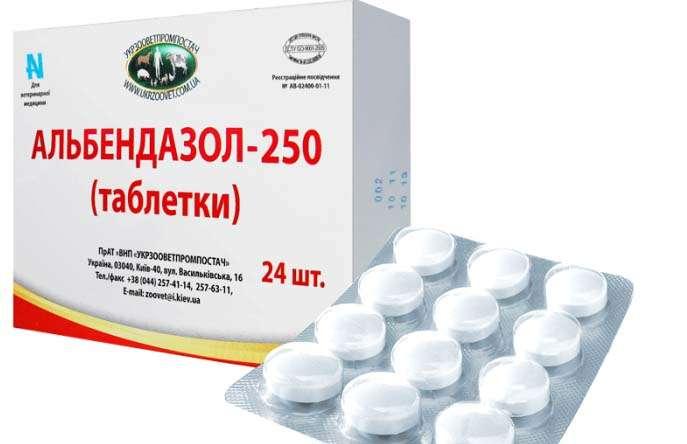 veterán antihelmintikus gyógyszer)