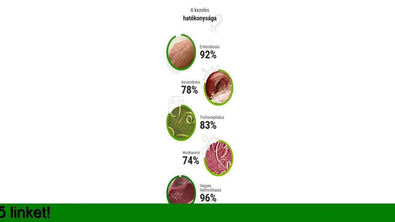 Mi a kerekféreg testürege