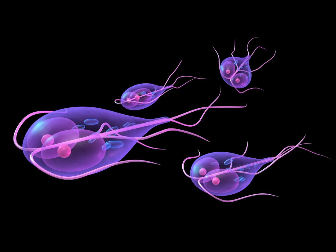 Does giardia cause stomach pain