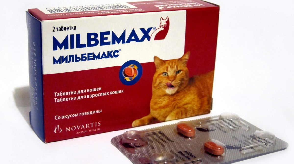 az állatorvosi gyógyszerek anthelmintikus szerek