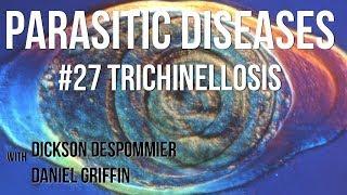 trichinella mikropreparátum
