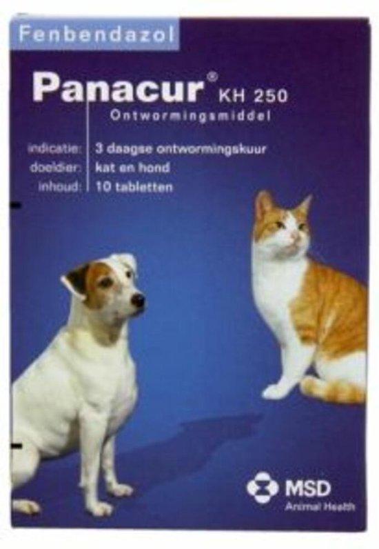 giardia panacur kat)
