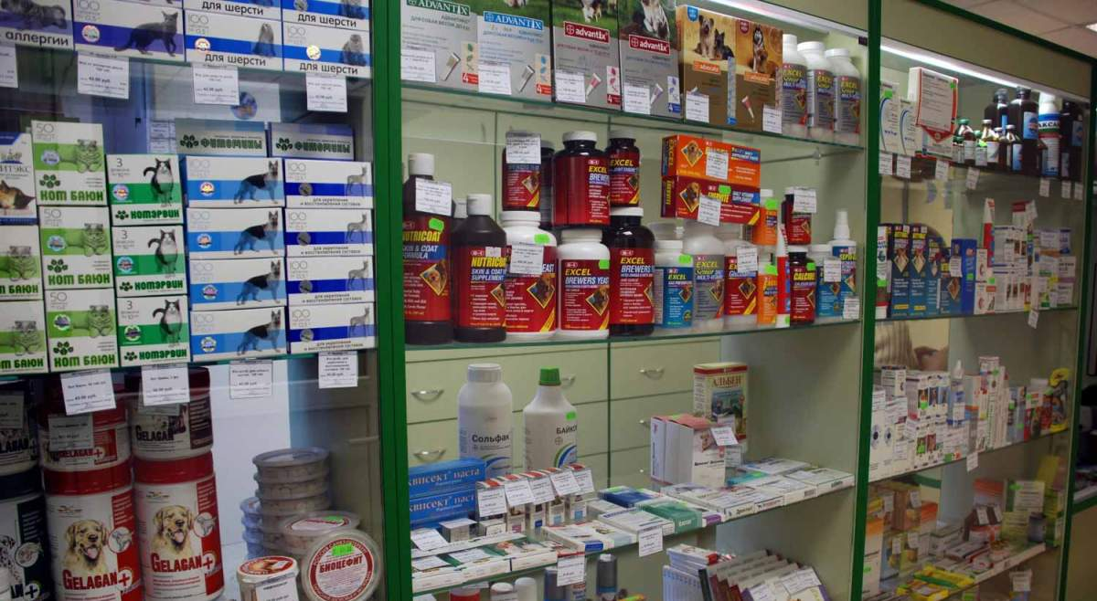 milyen gyakran kell féreggyógyszert szedni