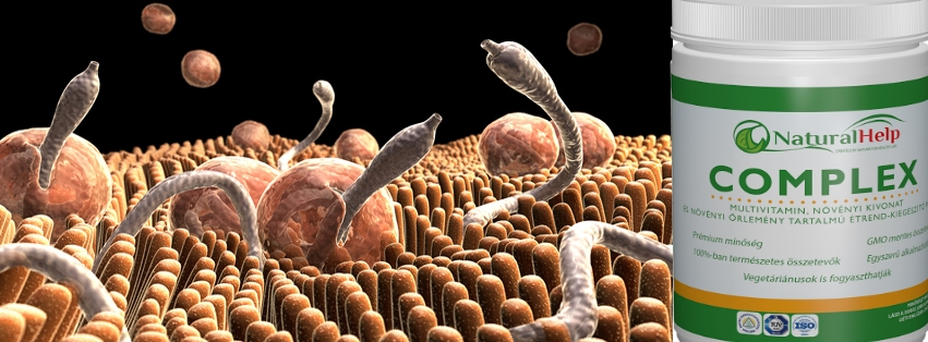 parazitak eltavolitasara szolgalo keszitmenyek az emberi testbol parazita hang cselekszik