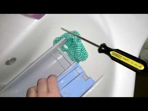 Rókagombák tisztítása a parazitáktól. Tisztítás parazitákból hidrogén-peroxiddal