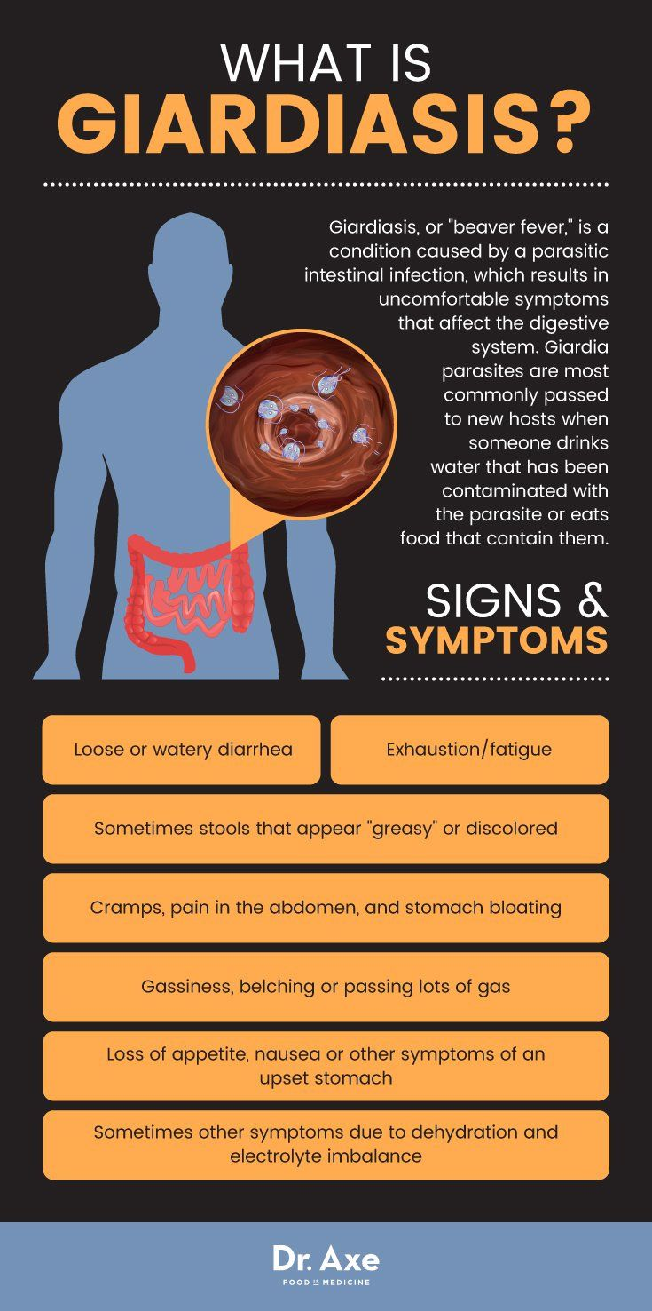 what to eat after giardia