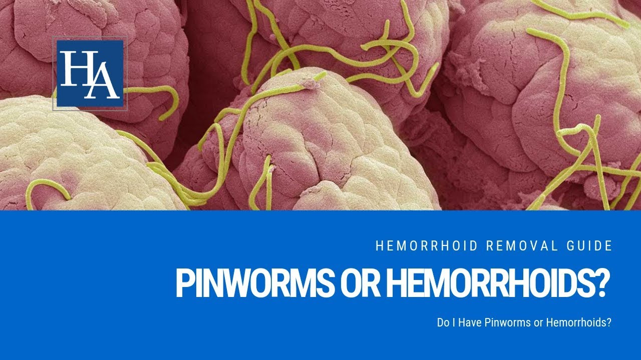 A pinworms lefogy)