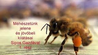 méhbetegségek és paraziták contoh hewan nemathelminthes