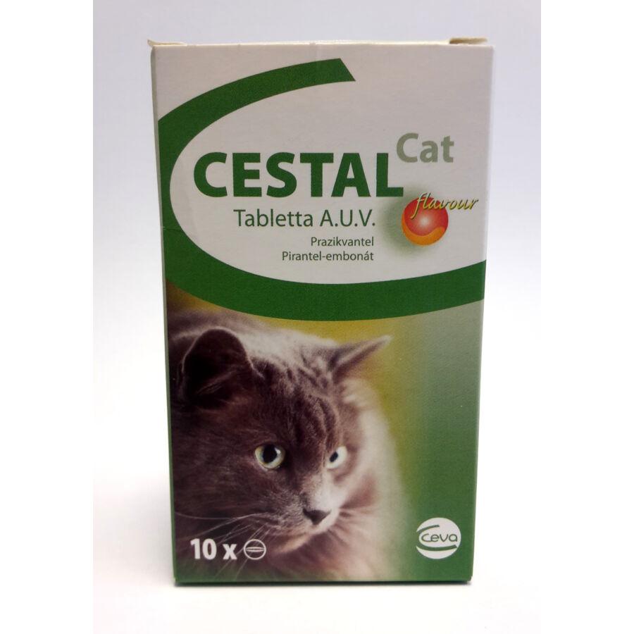 Cestal Cat rágótabletta macskáknak