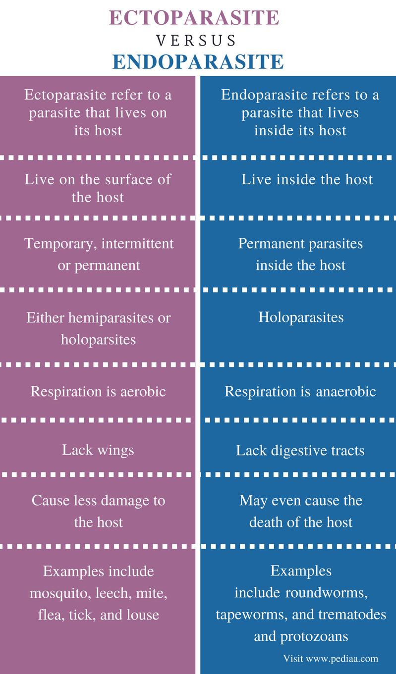 holoparasites és hemiparasites